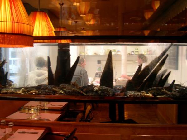 לה דום. אקווריום וחנות פירות הים
