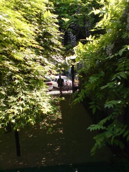 הגן ברחוב פורג' רויאל